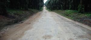 Treated Plantation Road