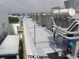TDK Laguna